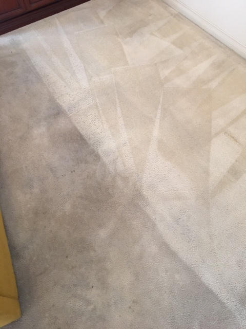 carpet cleaning adelaide domestic home house